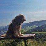 Die Kaiserberge im Schwabenland – Drei Berge, zwei Burgen, viele Wandertouren