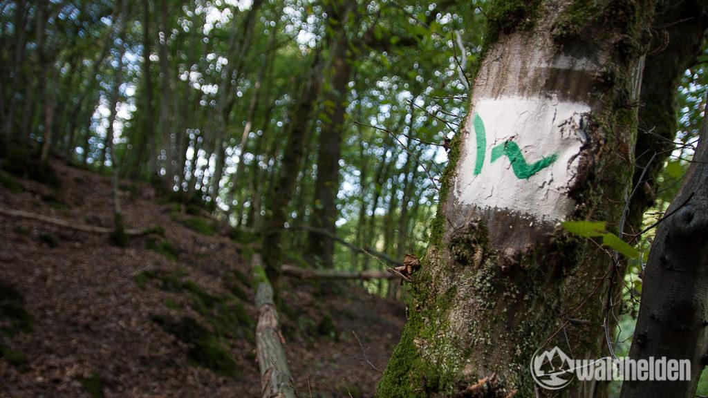 westerwaldsteig-1