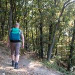 Gut versorgt beim Wandern: Tipps und Tricks zur Verpflegung