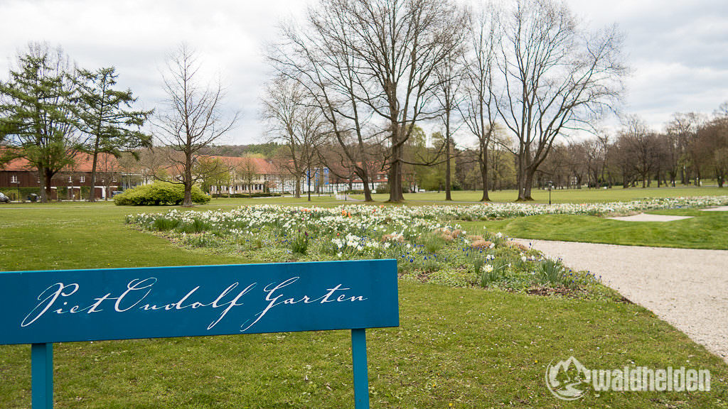 Bad Driburg Piet Oudolf Garten