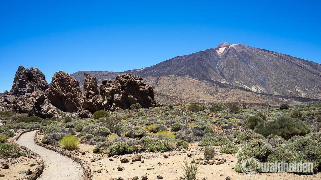 Der Teide - Wandern im Norden von Teneriffa