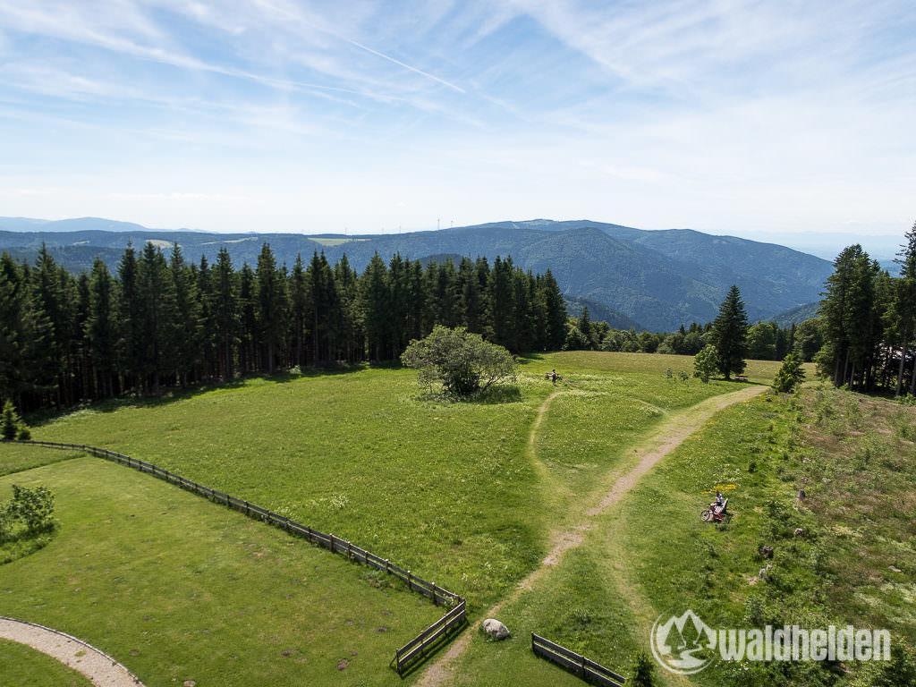 Aussicht vom Brendturm im Schwarzwald
