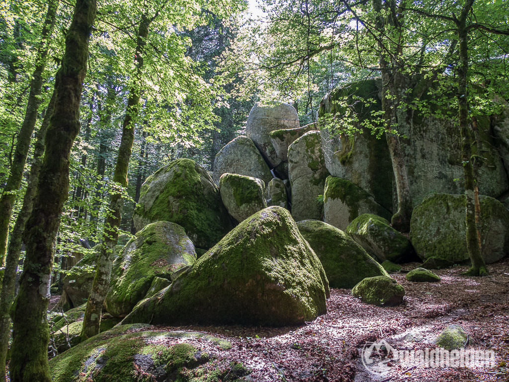 Günterfelsen im Schwarzwald