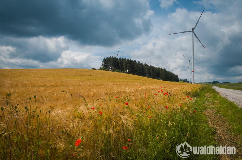GeoRadroute Ruhr-Eder Etappe IV – von Winterberg nach Willingen