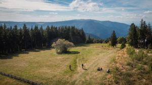 Wandern, Biken, Natur erleben - Das Ferienland Schwarzwald