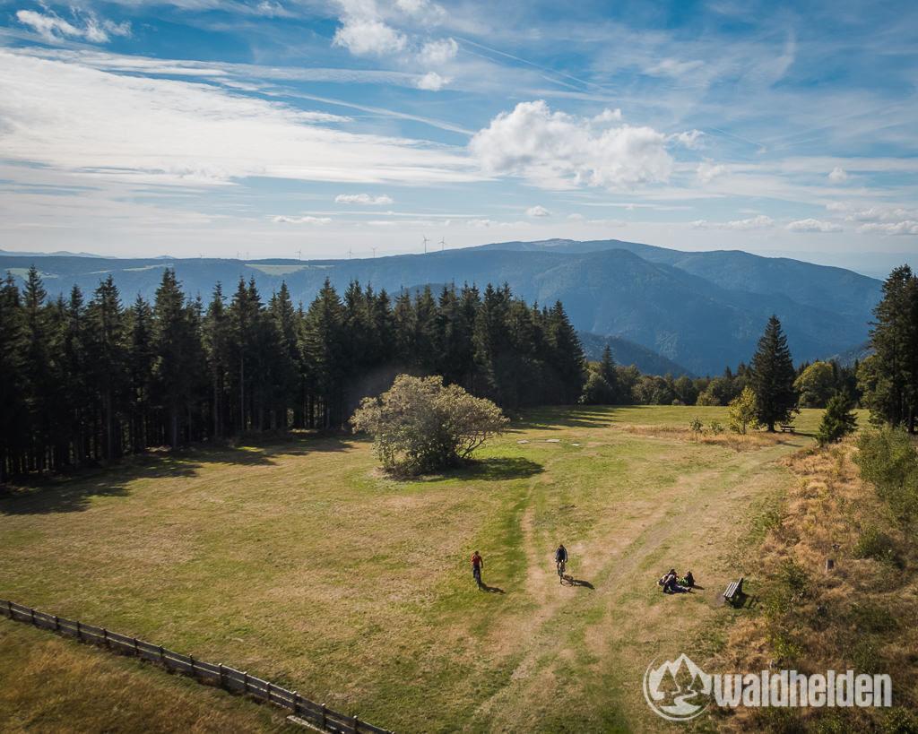 Ferienland Schwarzwald Ausblick vom Brendturm