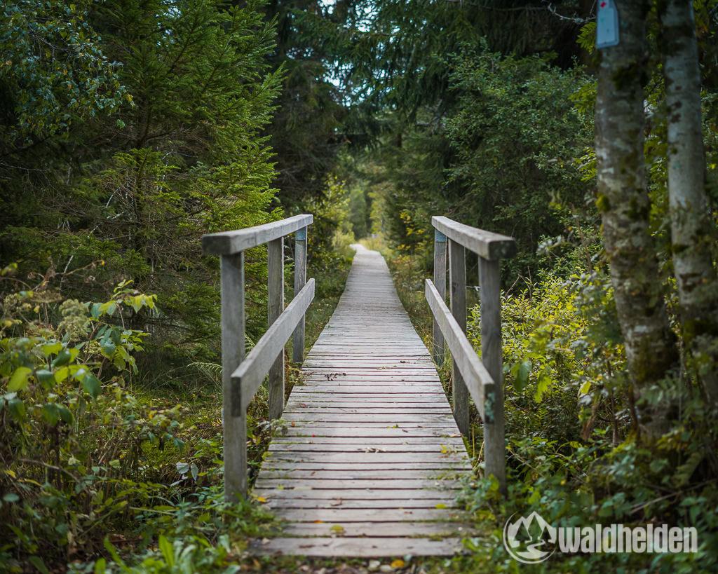 Ferienland Schwarzwald Holzsteg zum Blindensee