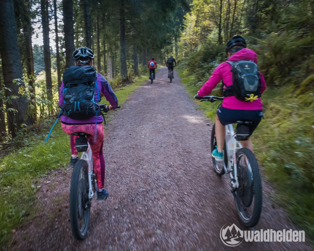 Ferienland Schwarzwald Mountainbike Tour