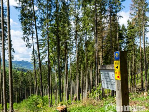 43 Sauerland Seelenorte - Die schönsten Orte im Sauerland