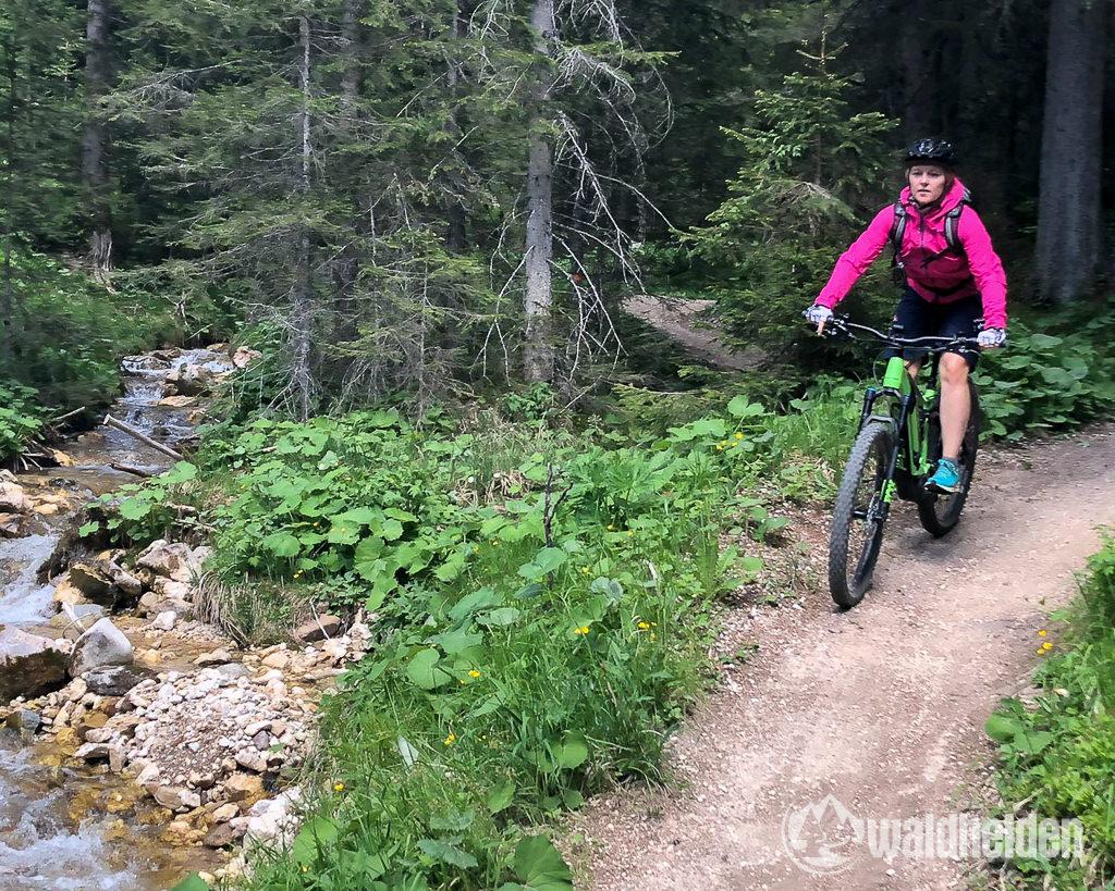 Rosadira Bike Carezza Trail