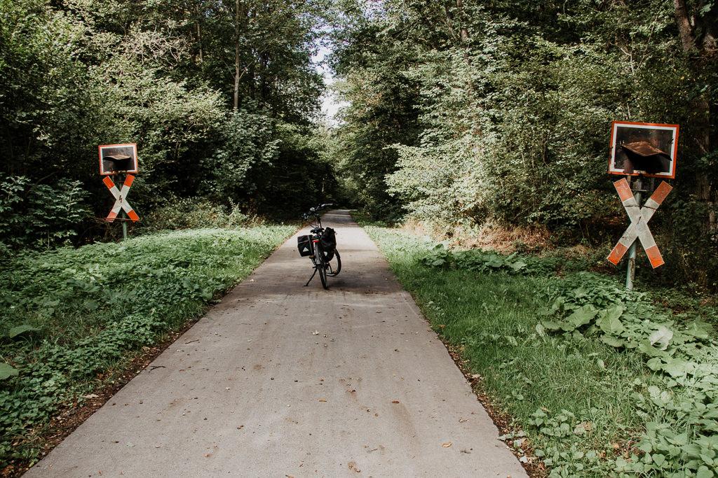Waldhelden Aktivreise Blog - cover