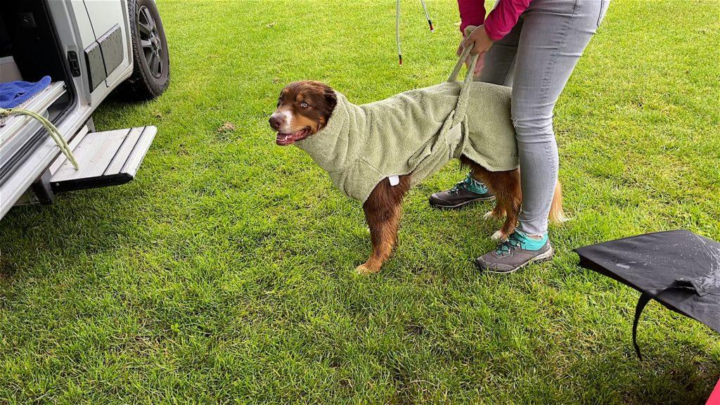 Bademantel Hund
