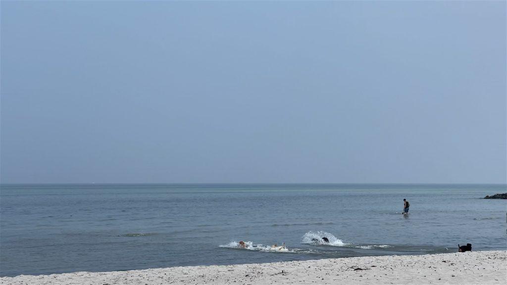 Ostsee Hundestrand Heidkate